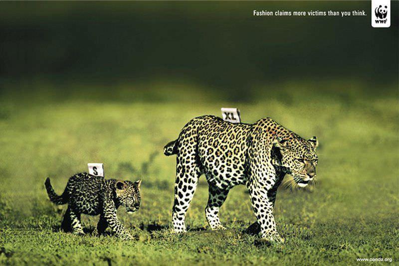 Las mejores campañas para defender los animales