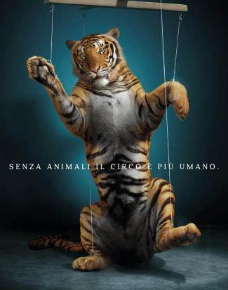 Las mejores campañas para defender los animales 9