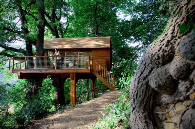 Pequeñas casas para integrarte con la naturaleza
