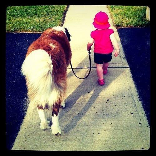 La importancia de la amistad entre los niños y sus mascotas