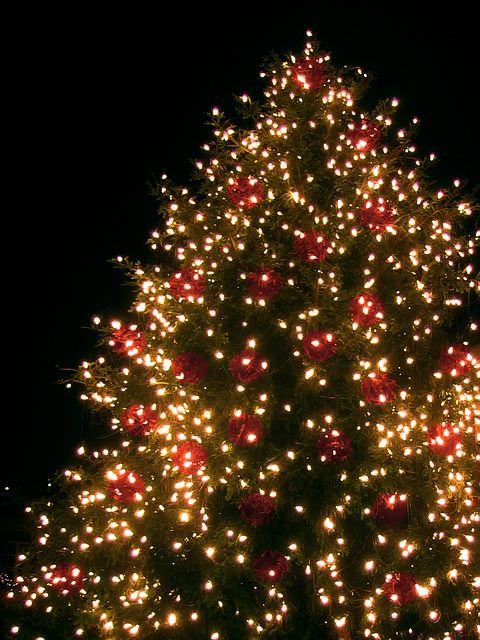 Navidad Decoración Navideña Según El Feng Shui Guía Espiritualmente