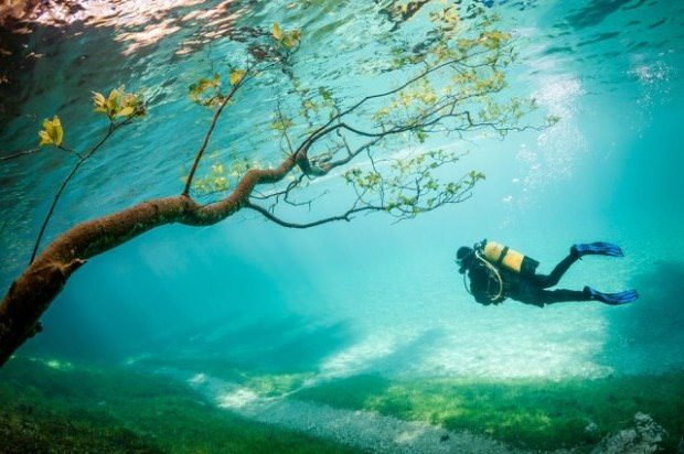 ¡Mira las fotografías ganadoras del Concurso de National Geographic! 2