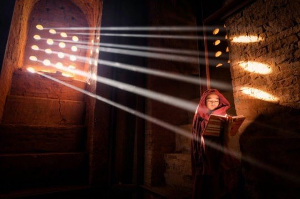 ¡Mira las fotografías ganadoras del Concurso de National Geographic! 3