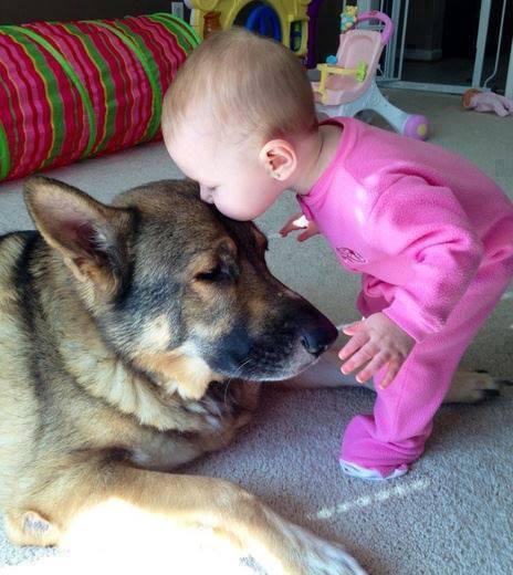 Las mejores fotografías de niños pequeños y sus mascotas 2