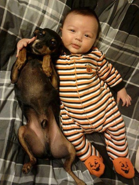 Las mejores fotografías de niños pequeños y sus mascotas 4