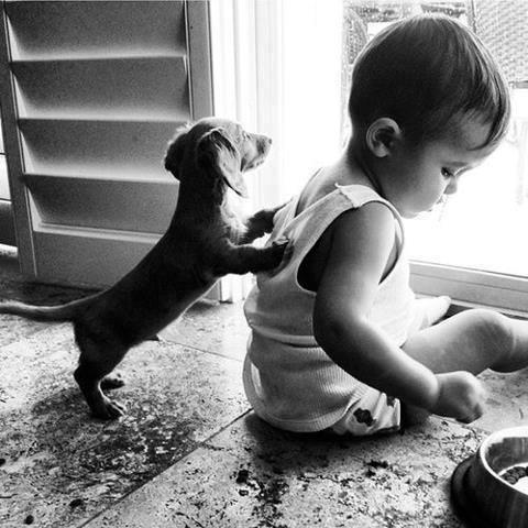 Las mejores fotografías de niños pequeños y sus mascotas 6