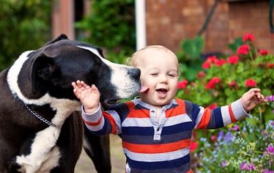 Las mejores fotografías de niños pequeños y sus mascotas 8