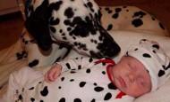 Las mejores fotografías de niños pequeños y sus mascotas
