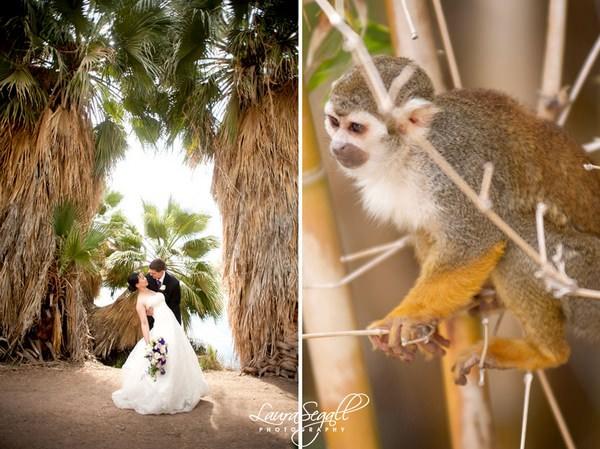 ¿Te imaginas celebrar tu boda en el zoo 8