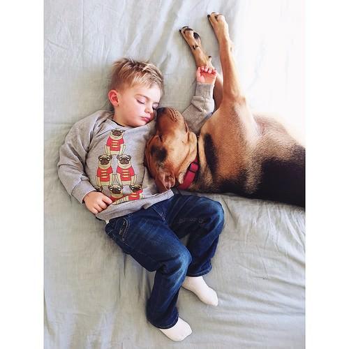 Dos hermanos y su perro compañeros inseparables 1