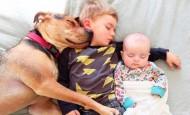 Dos hermanos y su perro compañeros inseparables