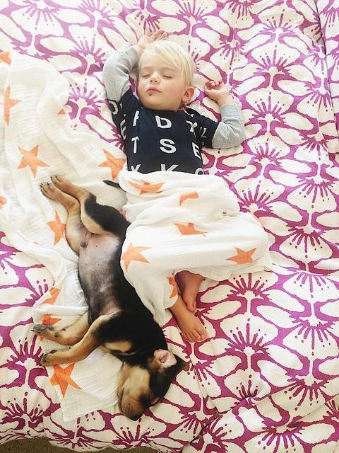 Dos hermanos y su perro compañeros inseparables 2