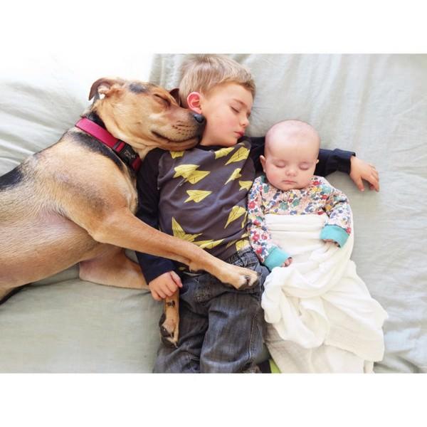 Dos hermanos y su perro compañeros inseparables 3