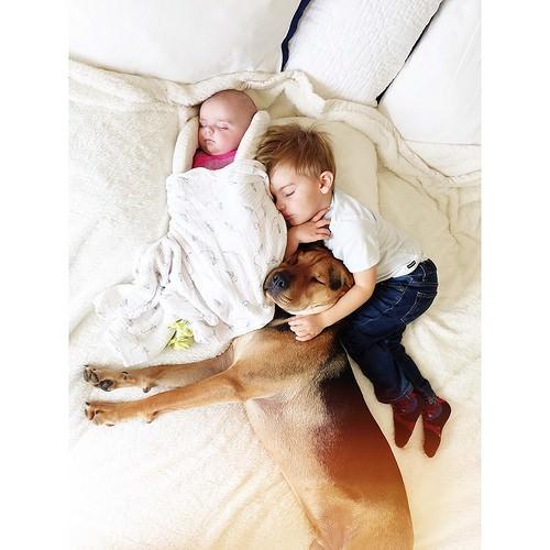 Dos hermanos y su perro compañeros inseparables 4