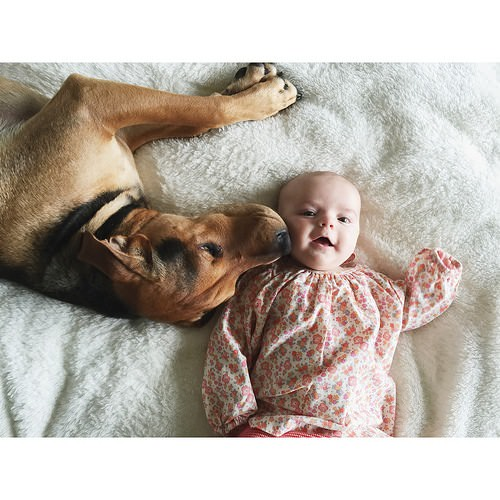 Dos hermanos y su perro compañeros inseparables 6