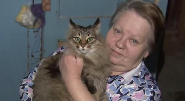 Este gato callejero salvó la vida de un bebé abandonado 1