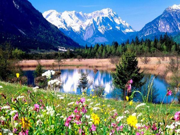 Las fotografías de los mejores paisajes de la primavera 7