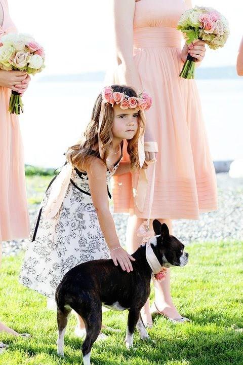 Mascotas fotografías de bodas con los novios y sus mascotas 10