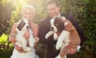 Mascotas fotografías de bodas con los novios y sus mascotas