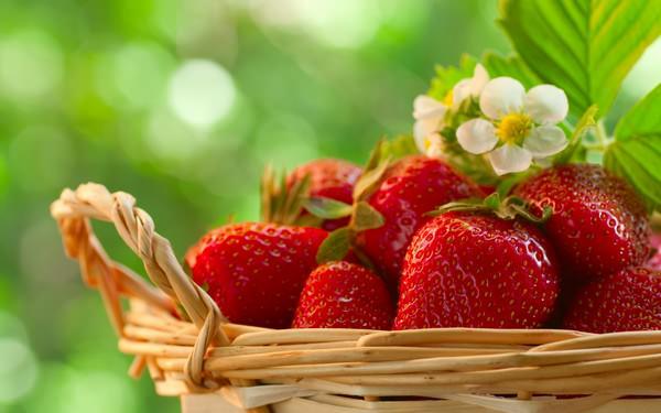 Alimentos de primavera y sus beneficios para la salud