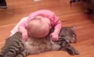 Este bebé no puede separarse de su mejor amigo, un gato