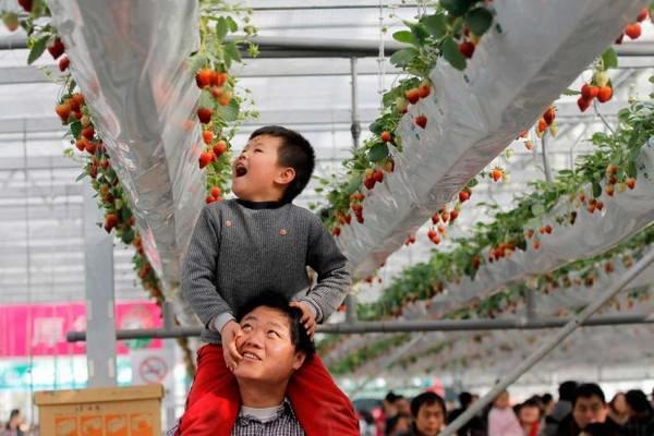 Padres y sus hijos en diferentes países del mundo-China