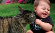 Gatos que conocen bebés por primera vez